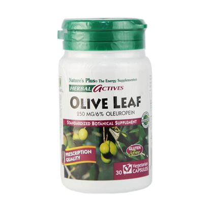 Picture of Natures Plus Herbal Actives Olive Leaf 250 mg Vcaps